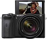 Sony Alpha 6600 - Cmara Evil APS-C con Objetivo Zoom Sony 18-135mm f/3.5-5.6 (Enfoque...